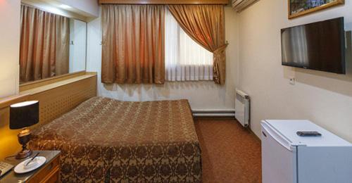 Sasan Hotel Room