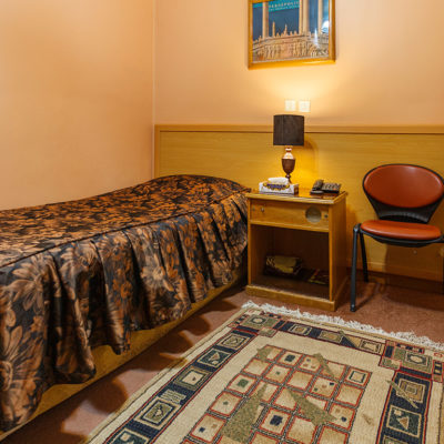 Sasan Hotel Shiraz Single Room